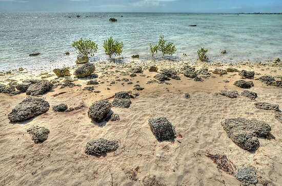St Andrews Beach at Yamacraw on Eastern Nassau, The Bahamas by 242Digital