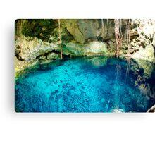 mexican cenote Canvas Print