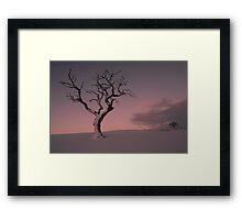 Big Tree - Little Tree Framed Print