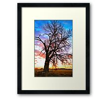 Morning Show Framed Print
