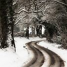 Winter Lane by PhotoLouis