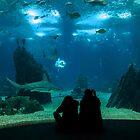 Fish Love by manateevoyager