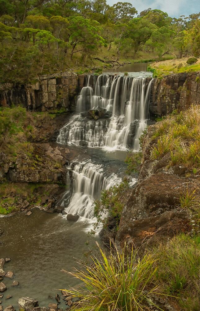 Upper Ebor Falls by Laura  Knight