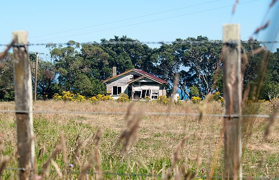 house in a field by Anne Scantlebury
