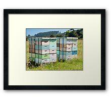 beehives 6 Framed Print