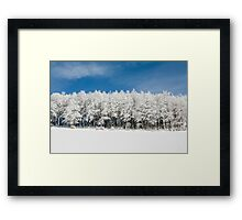 Frozen trees Framed Print