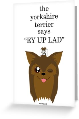 """the yorkshire terrier says """"EY UP LAD"""" by FayeFaye"""