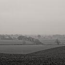 Misty Start by Billy Hodgkins