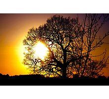 Sun burst Photographic Print