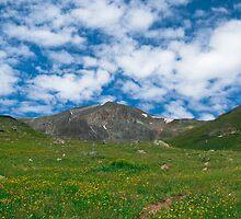 Handies Peak by Reese Ferrier