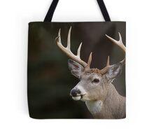 Whitetail Buck Portrait Tote Bag