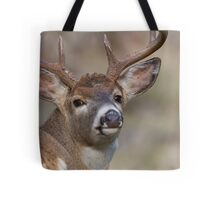 """Whitetail Buck Portrait, """"over the shoulder"""" Tote Bag"""