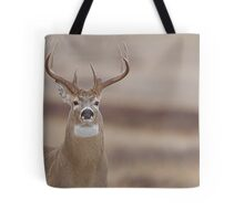 Whitetail Buck Portrait featuring rut swollen neck Tote Bag