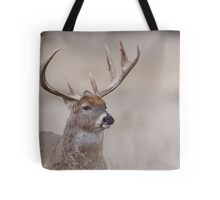 Whitetail Deer Portrait - very old buck Tote Bag