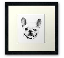 French Bulldog Portrait Framed Print