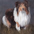 Shetland Sheepdog by Charlotte Yealey