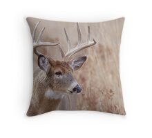 Whitetail Deer Portrait, Trophy Buck in prairie habitat Throw Pillow