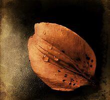 Hope by Jeanette Serrat