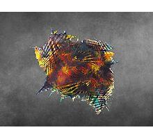 Cube - Fractal Art Photographic Print