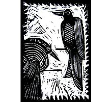 Black Birds Original Hand Pulled Linoleum Print Photographic Print