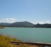 Alder Lake, Washington State by Joel Brown