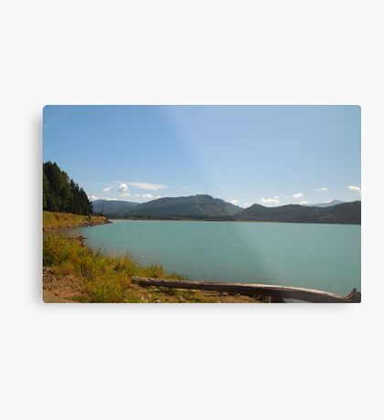 Alder Lake, Washington State Metal Print