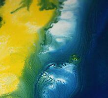 Island Sand Dune by Lisa  Payton