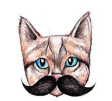 Moustache Cat Photographic Print
