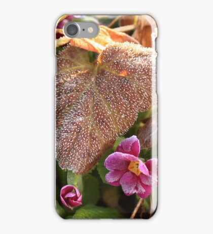 frost in the morning iPhone Case/Skin