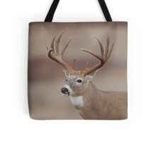 Whitetail Deer Portrait - Trophy Buck Tote Bag