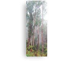 Soldiers In The Mist - Yarra Ranges - The HDR Experience Canvas Print
