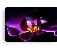 ~Secrets of the Orchid~ Canvas Print