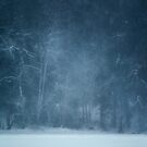 Winter blues by Mikko Lagerstedt