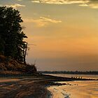 Evening Shoreline With Geese by Carolyn  Fletcher