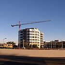 thee cranes ov Brisbane 2013 DAILY TOUR - - Day 30 by Craig Dalton