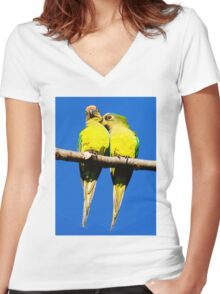 tee 433 Women's Fitted V-Neck T-Shirt
