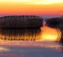 Sunset by digoarpi
