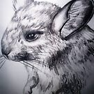 Chinchilla by tripsyprime8