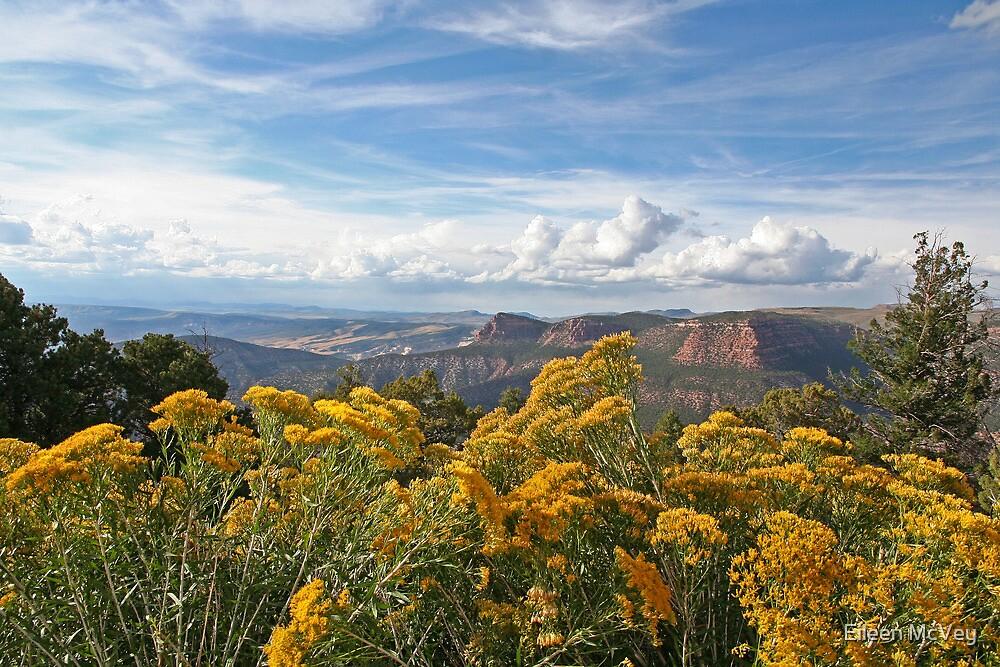 Golden Morning in Utah by Eileen McVey