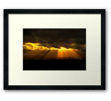Golden Otley Framed Print
