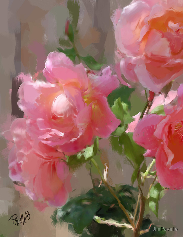 Sunny Roses by JimPavelle