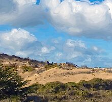 Marina State Beach Dunes IV by JimPavelle
