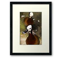 Duck-ttitude Framed Print