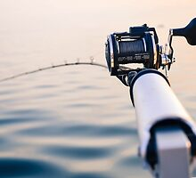 Fishing Rod by Jonathan Evans