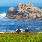 Pacific Grove Afternoon by JimPavelle