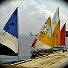 Sail School by Nancy Richard