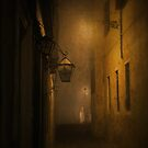 venetian alley by Cate Davies