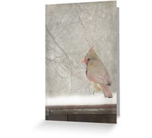 One Snowy Morning ~ Greeting Card