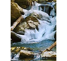 Stream of Life Photographic Print
