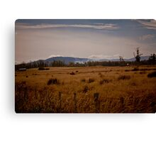 Landscapes Canvas Print